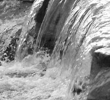 Taugahannock Creek, Ithaca, NY, black & white by Claudia Smaletz