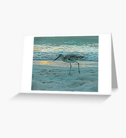 Strolling Sandpiper at Sunset Greeting Card
