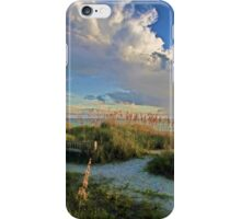 Down To The Beach 2 iPhone Case/Skin