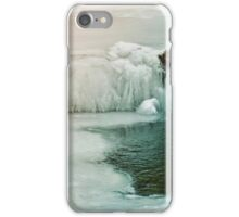 Winter Iced Waterfall iPhone Case/Skin