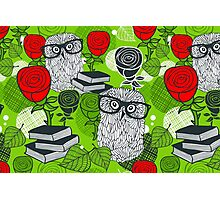 Red roses and clever owls. Photographic Print