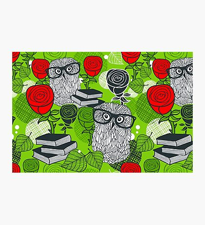 Red roses and clever owls Photographic Print
