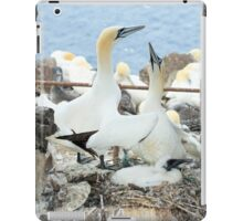 Gannets (Bass Rock) iPad Case/Skin