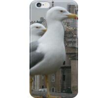 See gulls in Rome! iPhone Case/Skin