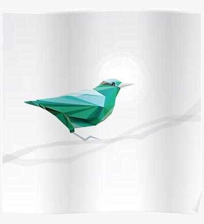 Turquoise Bird  Poster