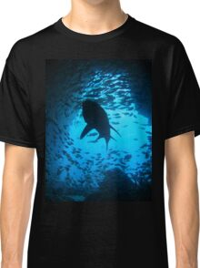 Grey Nurse Shark, South West Rocks, Australia Classic T-Shirt