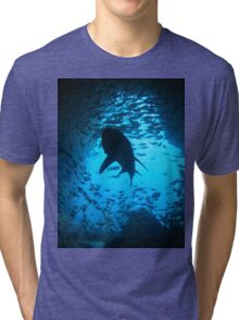 Grey Nurse Shark, South West Rocks, Australia Tri-blend T-Shirt