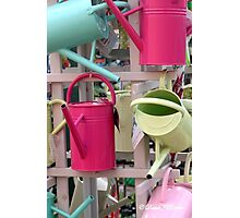 Coloured watering cans Photographic Print