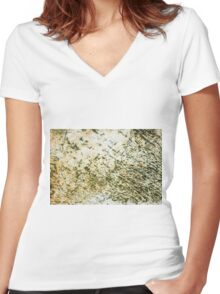 I See No Ships Women's Fitted V-Neck T-Shirt
