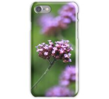 The flowers in the walled garden. iPhone Case/Skin