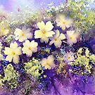 Primroses and Violets by Jacki Stokes