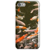 Red fish, Bright Exotic Tropical coral fish in water iPhone Case/Skin