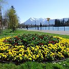 the lake photo, Switzerland by fladelita