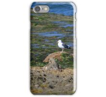 Only One ~ Sunset Cliffs, California iPhone Case/Skin
