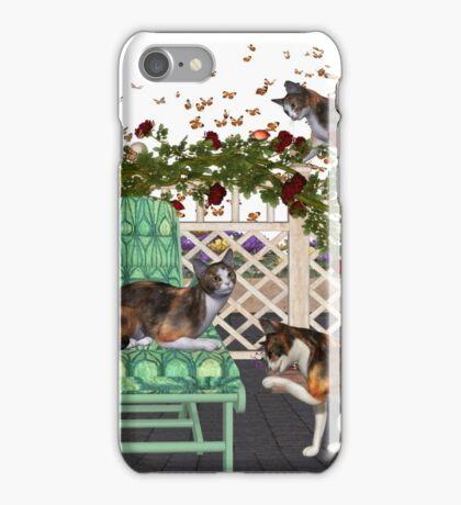 Lazy Days .. June Cats iPhone Case/Skin