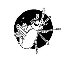 Lunar Crystal Beetle Ink Illustration Photographic Print