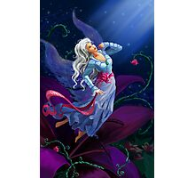 The night fairy flying to the moon Photographic Print