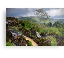 The Loup Of Fintry Metal Print