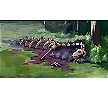 Dragon's corpse at the edge of a swamp lake Photographic Print