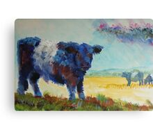 Belted galloway cow Dartmoor landscape painting Canvas Print