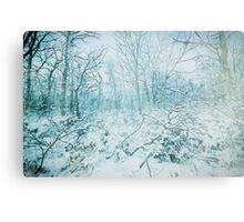 Winter Poconos Woods Canvas Print