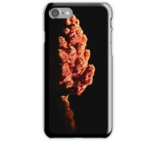 Fire cone. iPhone Case/Skin