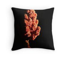 Fire cone. Throw Pillow