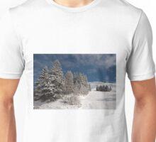 Les Borseliers - Champagny-en-Vanoise, France Unisex T-Shirt