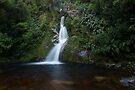 Dorothy Falls _ New Zealand's South Island by Barbara Burkhardt
