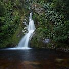 Dorothy Falls _ New Zealand's South Island by Barbara Burkhardt