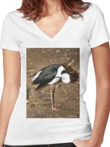 Pied Stilt Preening Women's Fitted V-Neck T-Shirt