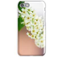 Spring Flower Series 29 iPhone Case/Skin