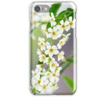 Spring Flower Series 32 iPhone Case/Skin