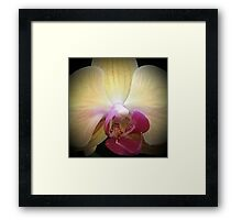 Orchid...Reverence & Humility Framed Print