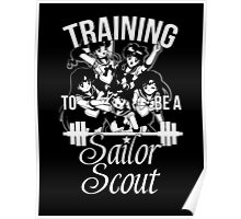 Training to be a Sailor Scout (Group) Poster