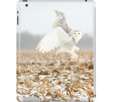 Goddess of the snowy fields iPad Case/Skin