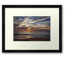 As Dolphins Swim By Framed Print