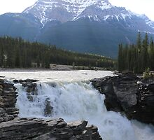 Athabasca Falls Canada by Alison Murphy