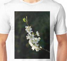 Plum Blossom Unisex T-Shirt