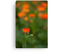 orange flora (1) Canvas Print