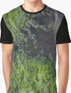 seaweed pool Graphic T-Shirt