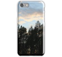 Swedish forest  iPhone Case/Skin