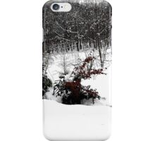 SNOW SCENE 6 iPhone Case/Skin