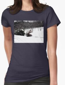 SNOW SCENE 6 Womens Fitted T-Shirt
