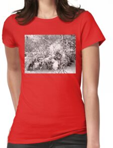 SNOW SCENE 4 Womens Fitted T-Shirt