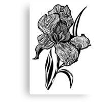Single flower of Iris graphic illustartion Canvas Print