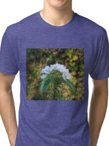 Apple Blossom Tri-blend T-Shirt