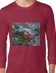 Winter Berries and Frost Long Sleeve T-Shirt