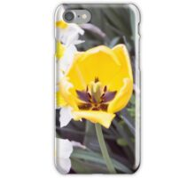 Spring Flower Series 39 iPhone Case/Skin