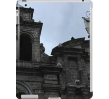Cross and Virgin Mary Statue iPad Case/Skin